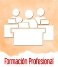 Formacion Profesional